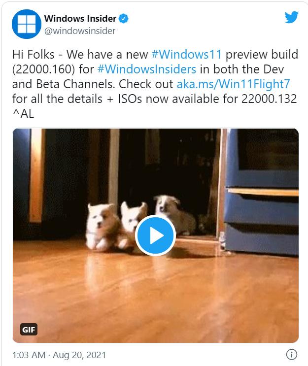 來源: Windows Insider。